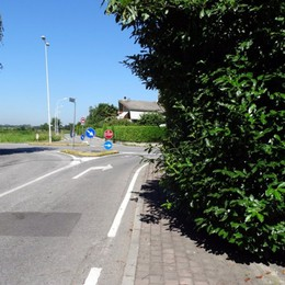 La siepe ingombra  strada o marciapiede? A Sotto il Monte multe fino a 639 euro