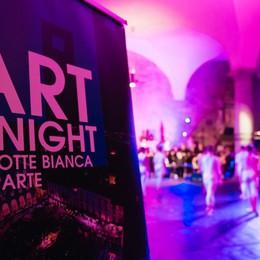 In migliaia all'Art2night Ecco gli scatti più belli