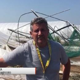 Agricoltura, oltre sei milioni di euro di danni