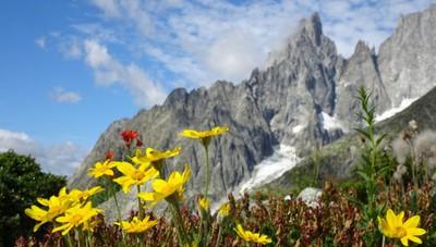 «Montagna da sogno...»