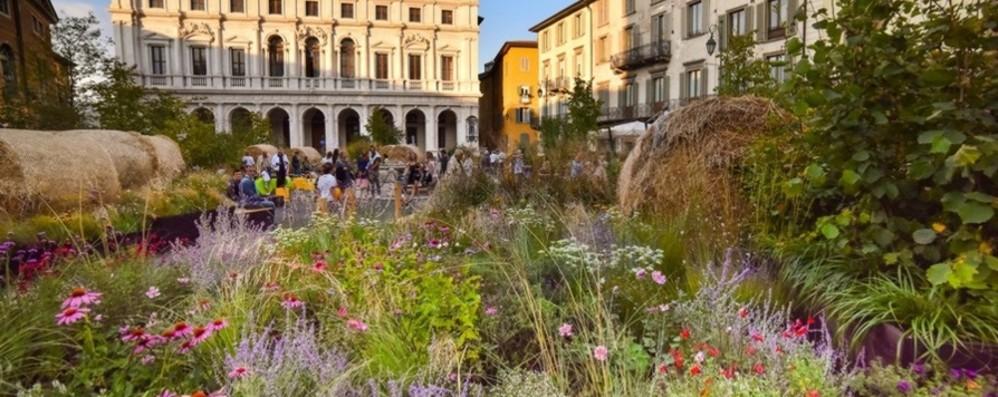 Piazza Vecchia «green» - Foto Dodicimila vasi intorno alla fontana