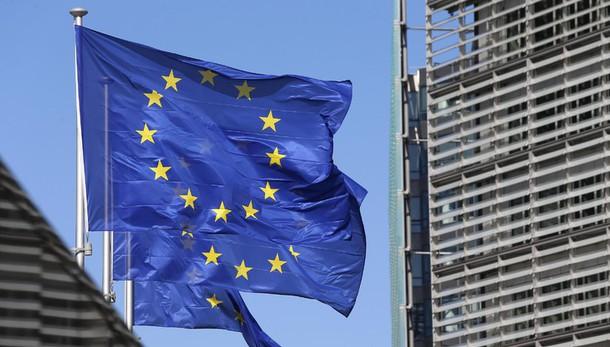 Commissione Ue prepara divieto per due insetticidi
