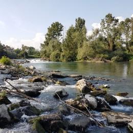 Si tuffa nel fiume e rischia di annegare Calcio, 27enne salvato da un bagnante