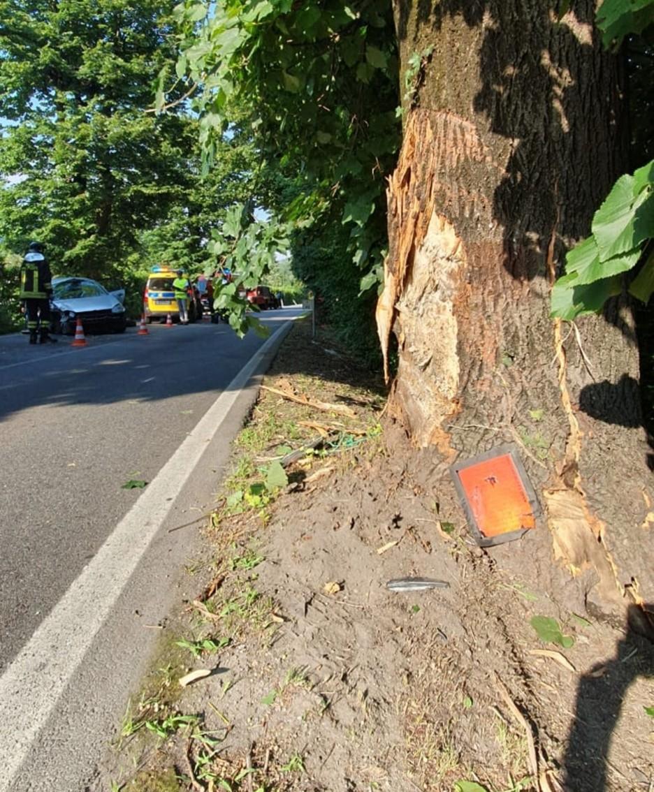 L'albero contro cui si è schiantata l'auto