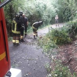 Maltempo con allagamenti e alberi caduti Voli dirottati e interventi i vigili del fuoco