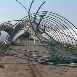 Agricoltura bergamasca sfregiata - Foto Maltempo, danni per oltre 6 milioni di euro