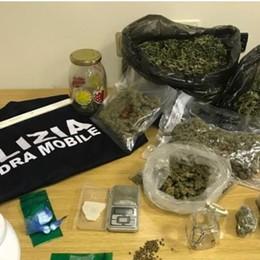 Coltiva droga e la spaccia La serra a Ranica, arrestato 34enne