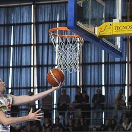 Tiri liberi sul basket orobico Di facciata le dichiarazioni dei coach?