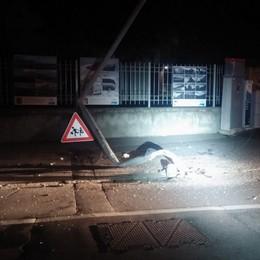 Auto centra un palo e lo abbatte -Foto Notte «movimentata» a Dalmine