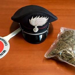 Nasconde la droga in un bosco Appena diplomato, arrestato 19enne