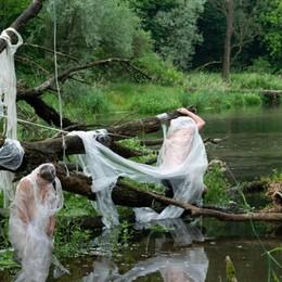 «La plastica ci soffoca» -Foto Parolini rivisita il Vitruviano di Leonardo