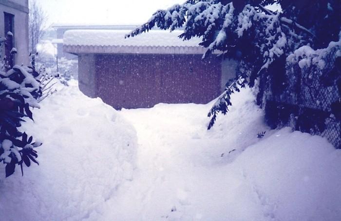 La nevicata a Solza di Ezio Manzoni