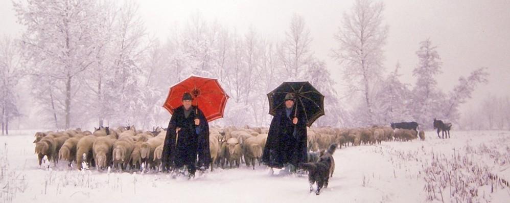 Quel 13 gennaio di 35 anni fa - Foto Ricordate la nevicata del secolo?