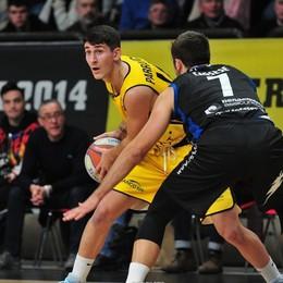 Basket, turno di squalifica al campo Bergamo valuta di non fare il ricorso