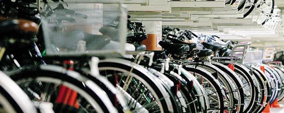 Biciclette, crescono le vendite ma c'è carenza di ricambi
