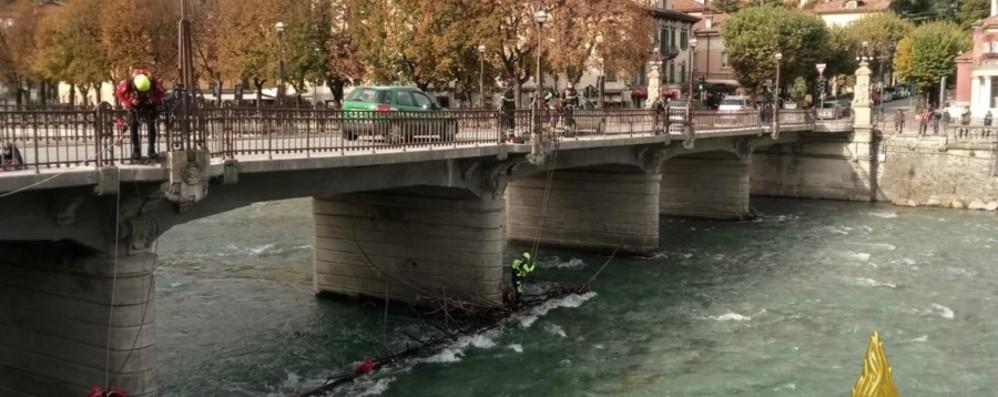Tronco d'albero incastrato sotto il ponte San Pellegrino, nucleo Saf in azione - Foto