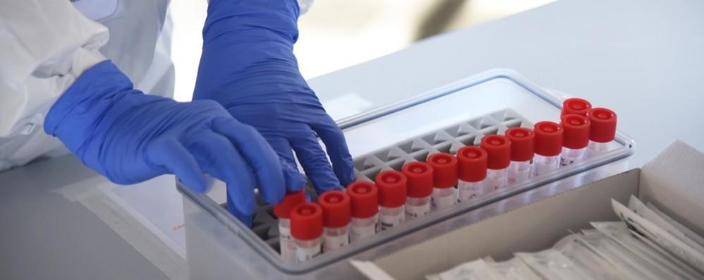 Contagi, la provincia di Bergamo tiene ma  il virus corre di più nella Bassa - I dati