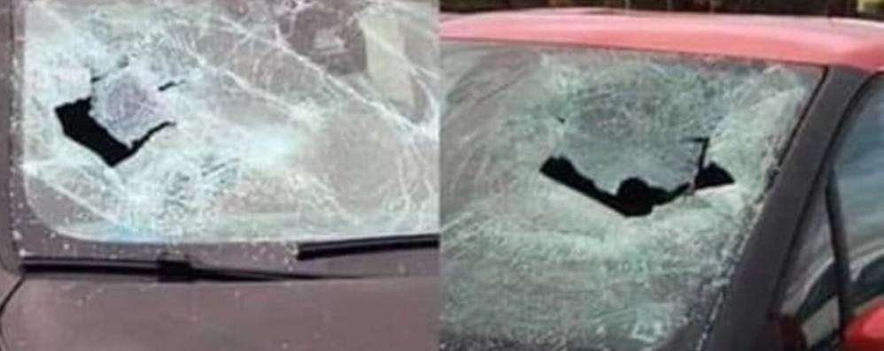 Vetri sfondati alle auto dei medici - Le foto  Atti vandalici al Policlinico di Zingonia
