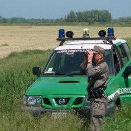Bracconiere fugge nei boschi Poi denuncia furto d'auto, smascherato