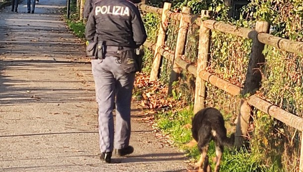 Controlli con i cani antidroga a Bergamo Trovato hashish in un cespuglio sul Morla