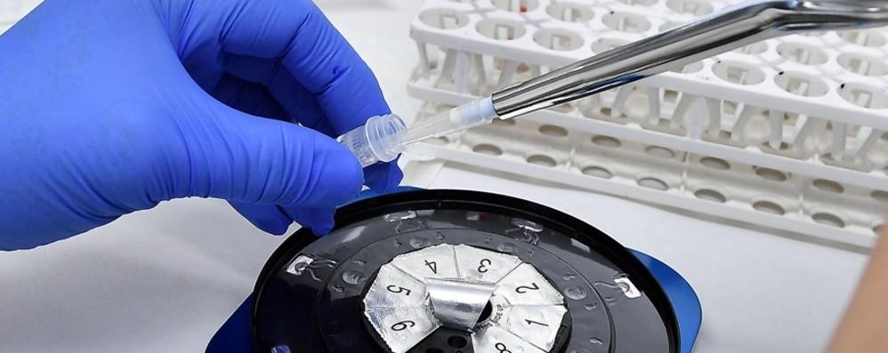 Coronavirus, in Italia 20.648 nuovi casi Oltre 176 mila tamponi, 541 le vittime