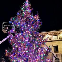 L'energia dei commercianti per Natale Albero multicolor e il pensiero per i bimbi