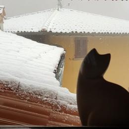 L'incanto della neve