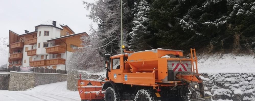 È arrivata la neve - Foto e video Fiocchi bianchi in Bergamasca