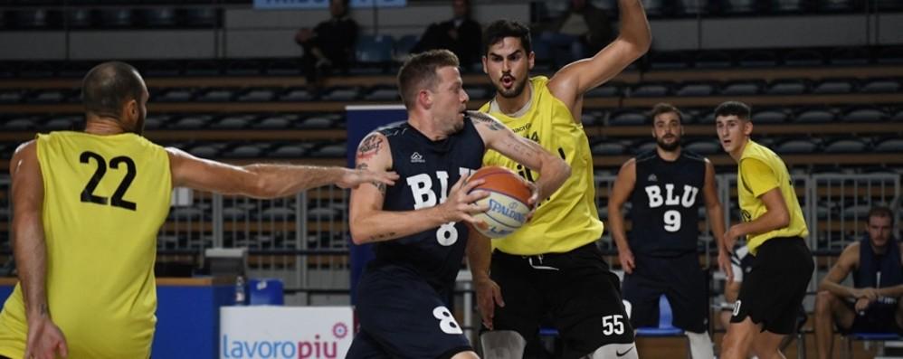 Basket A2, Bergamo fuori l'orgoglio  Arriva il derby con l'Orzinuovi