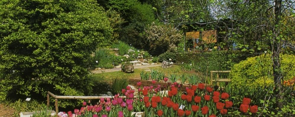 Per l'orto botanico ancora lavori Giardino d'inverno e nuova serra
