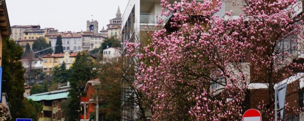 Settimana «a ritmi lenti» e vento A Bergamo l'aria si è ripulita