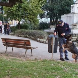 Operazione «Scuole sicure» in città In azione anche i cani poliziotto