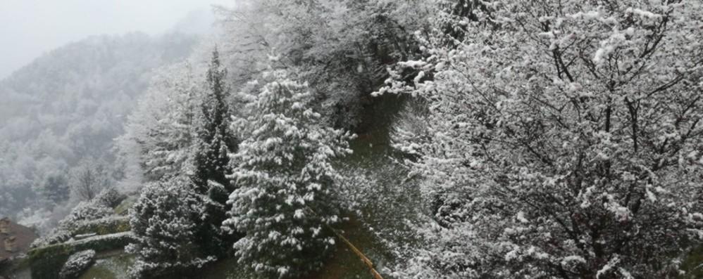 Poca neve, ma resta il freddo E la situazione non migliorerà
