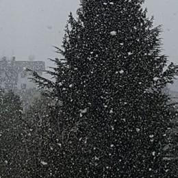 Primavera con i fiocchi di neve La sorpresa in Valle Seriana - Foto