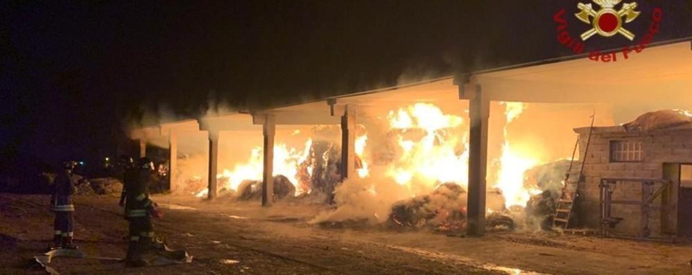 Stezzano, bruciano 400 quintali di fieno Messi in salvo 150 capi di bestiame -Video