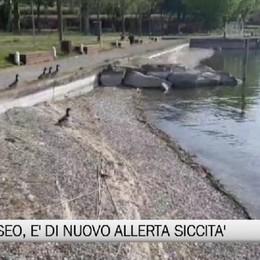 Lago d'Iseo, è di nuovo allerta siccità