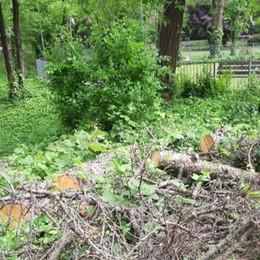Affluenza nei parchi, ecco le aree chiuse  Il cimitero di Bergamo riapre il 18 maggio