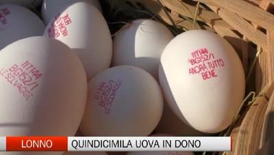 Lonno, quindicimila uova in beneficenza