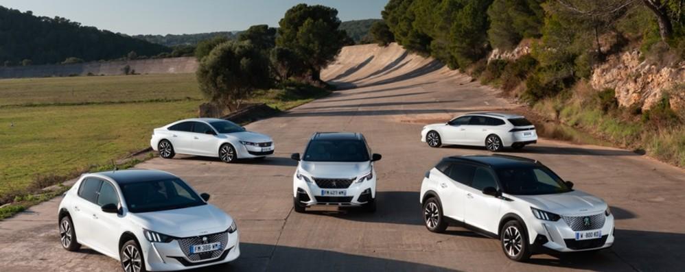 Peugeot Webstore: tutte le auto disponibili