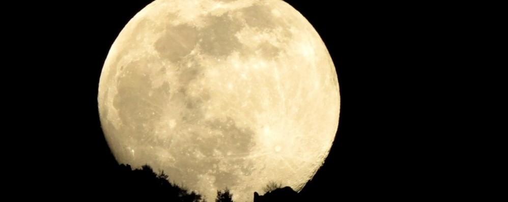 Stasera tutti alla finestra o sul balcone C'è la super luna più bella dell'anno