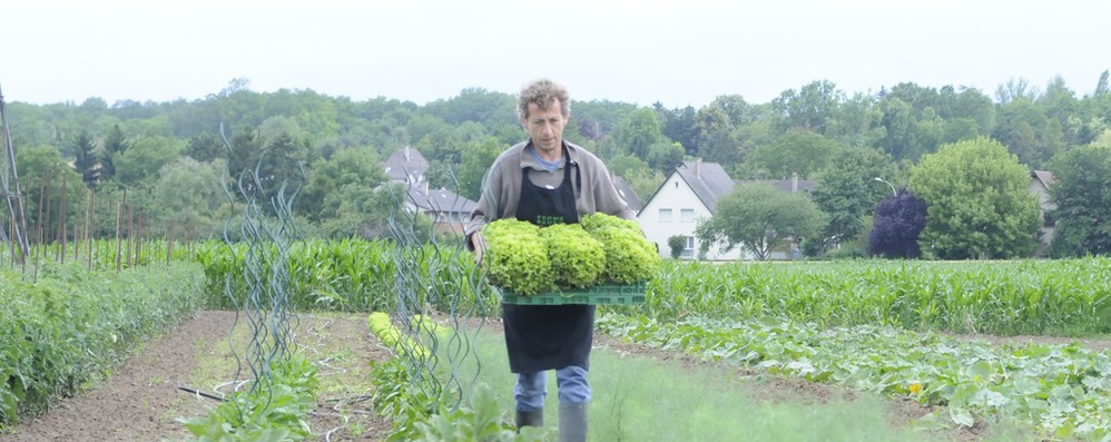FoodDrinkEurope, Covid non è scusa per evitare Green Deal