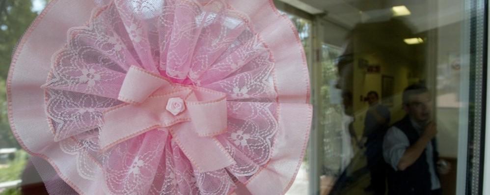 Fiocco rosa in redazione, è nata Sveva Figlia della collega Fausta Morandi