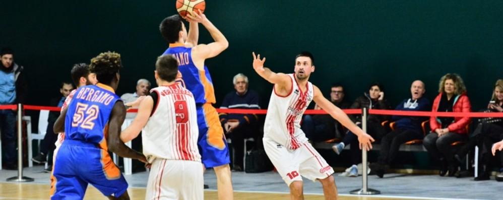 Basket, non solo Bergamo e Treviglio Le società delle serie «minori» a confronto