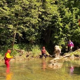 Mucca scivola per 20 metri nel fiume Lenna, salvata dai Vigili del fuoco - Foto