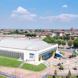 Tiri liberi sul basket orobico  Bergamo-Treviglio, fusione possibile?