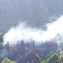 Incendio ad Ardesio Brucia un ettaro di bosco