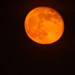 Venerdì sera con la luna rossa Ecco gli scatti da Bergamo