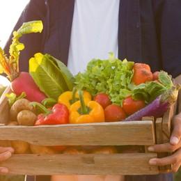 5 idee per utilizzare le verdure estive in modo creativo (nei primi piatti)