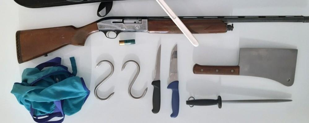 Nembro, fermato bracconiere nella notte A caccia senza permesso e con armi illegali