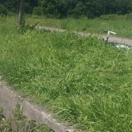 Cade con la bicicletta in un fosso Morto pensionato di 76 anni a Cisano